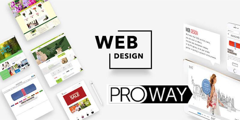 شركة تصميم مواقع في المنصورة